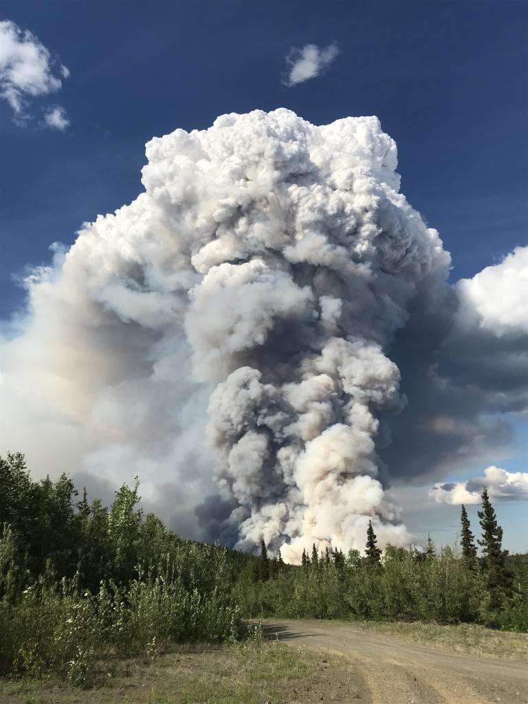 Isom Creek Fire